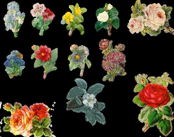 Vintage Flowers Set 1 ...