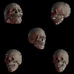Skulls3 PNG