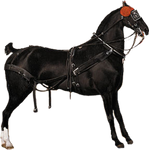 1800's Saddled Horse 3 PNG
