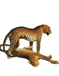 Two Leopards 2 PNG by chaseandlinda