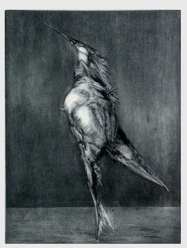 bird of ego 1 by onurakinci