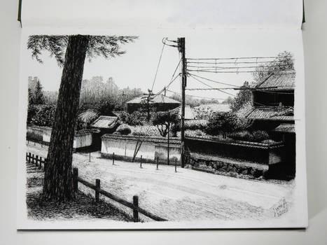 Nara 3/2020