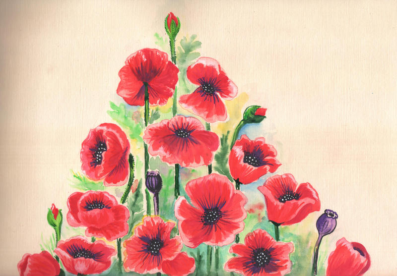 Poppies' mountain by saysly