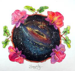 Galaxy orhyds
