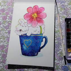 Angora rabbit in the cup by saysly