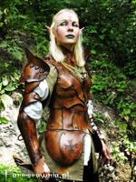 Elven Gaurd - Amber Misstres 01 by farmerownia