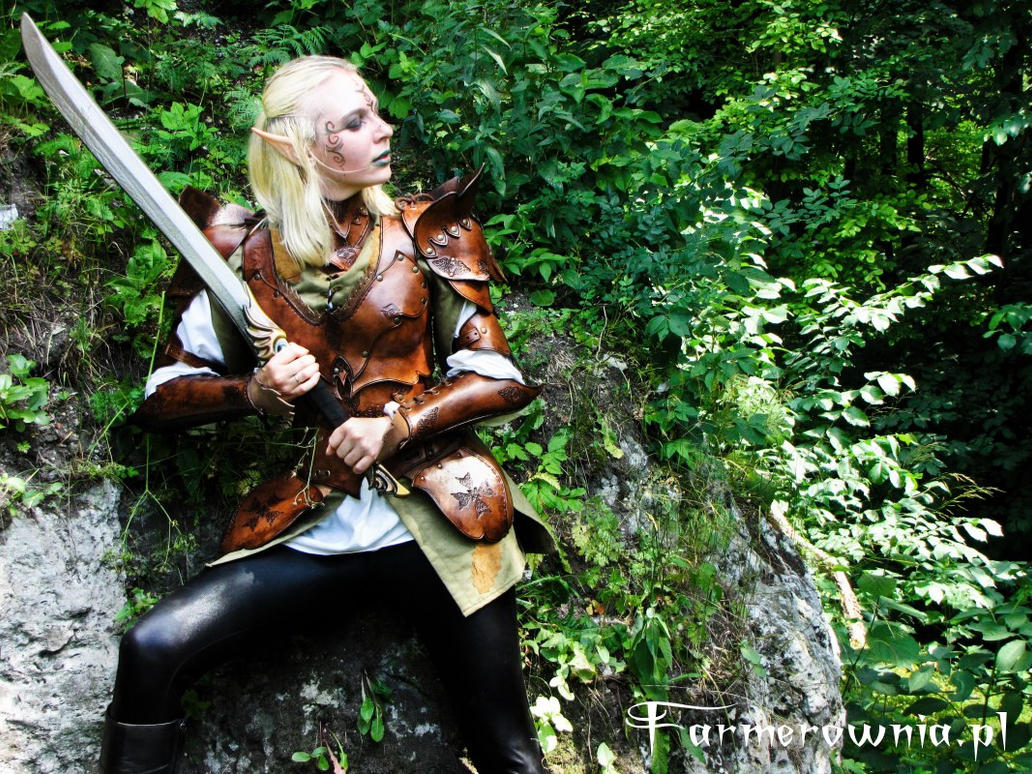 Elven Gaurd - Amber Misstres 02 by farmerownia