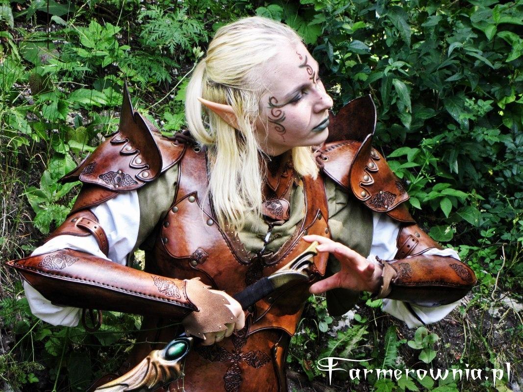 Elven Gaurd - Amber Misstres 03 by farmerownia