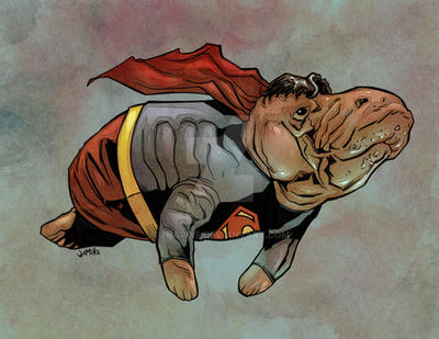 Supermanatee by jharris