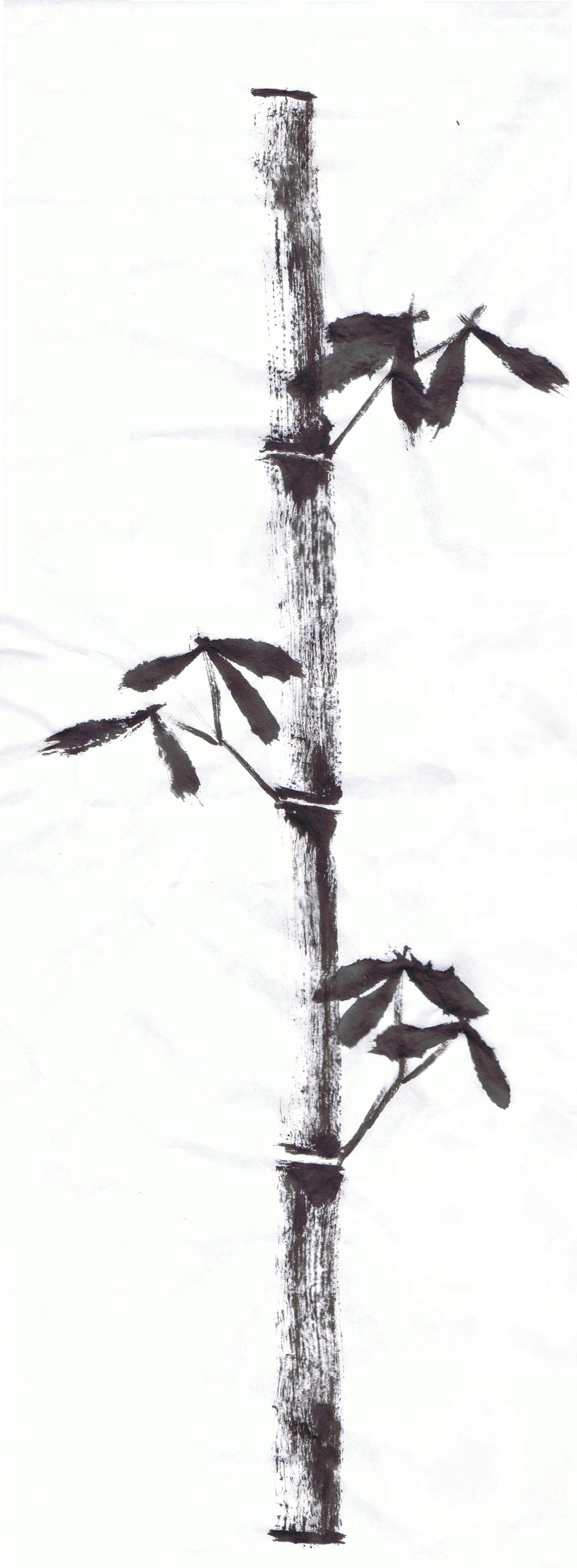 Bamboo Sumi-e by Sondsara