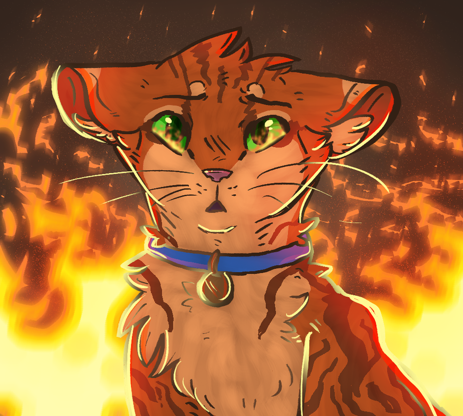 cat of fire by ThatCreativeCat