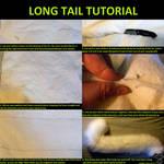 Long Tail Tutorial