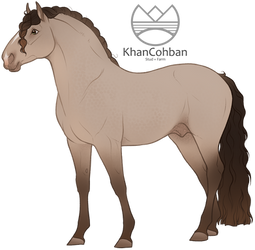 ART ADOPT: Hispano Arabian Stallion SOLD