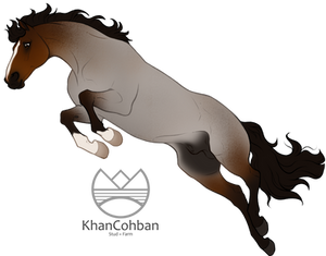 ART ADOPT: Warmblood Stallion SOLD