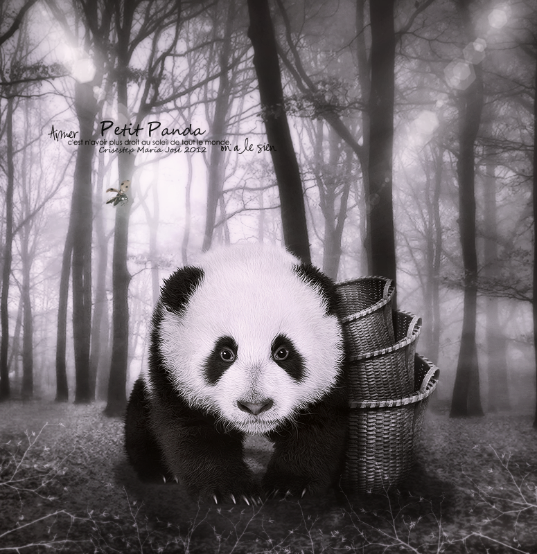 Panda by CrisestepArt