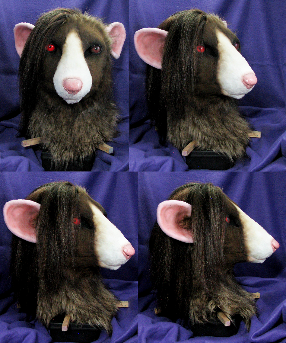 Rat head turnaround by Eddie-Ka