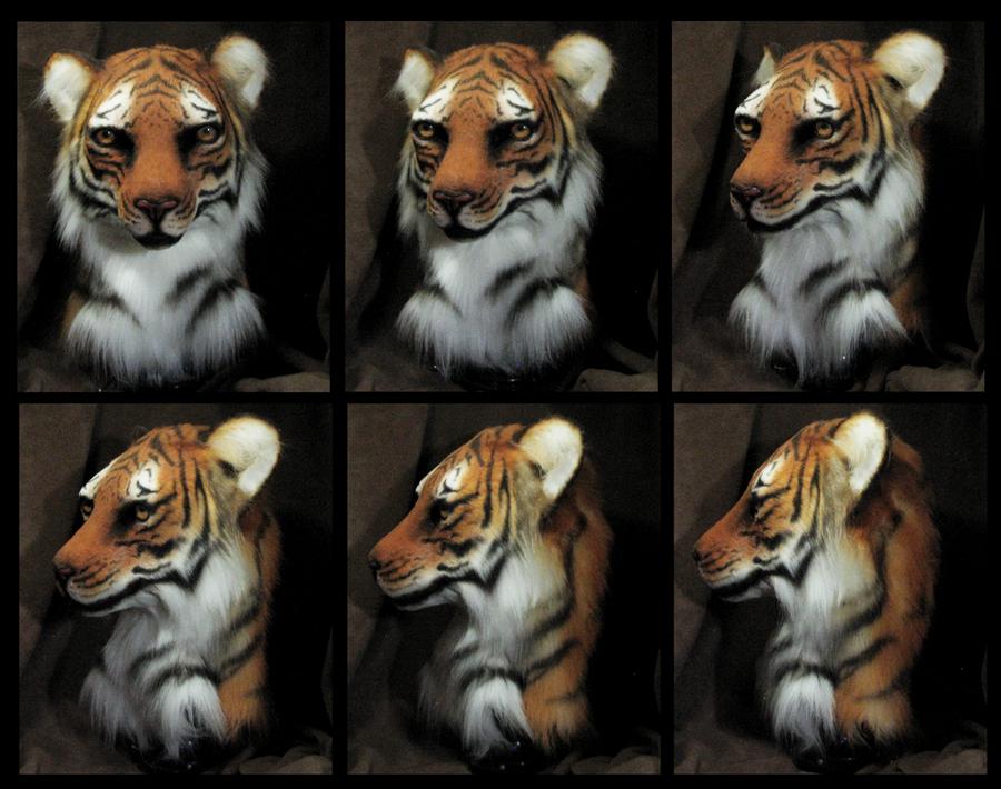 Tiger Head by FeralFacade