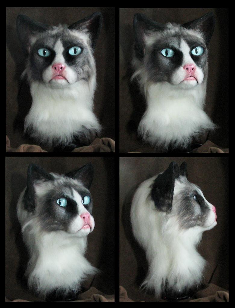 Grumpy Cat Partial by Eddie-Ka