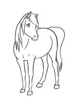 .Arabian mare Lineart. by xRedLily