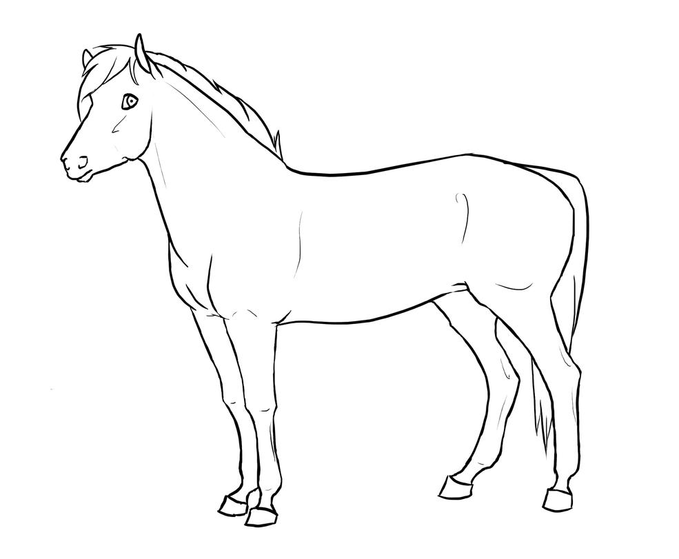 Line Drawing Of Horse : Horse lineart by xredlily on deviantart