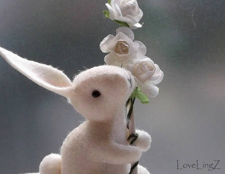 White rose rabbit