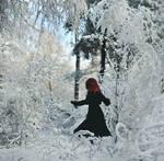 Lost In Narnia II