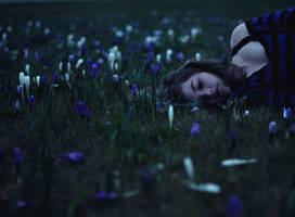 Slumber by TheFoxAndTheRaven
