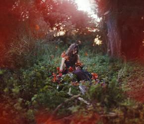 The Awakening Of Autumn