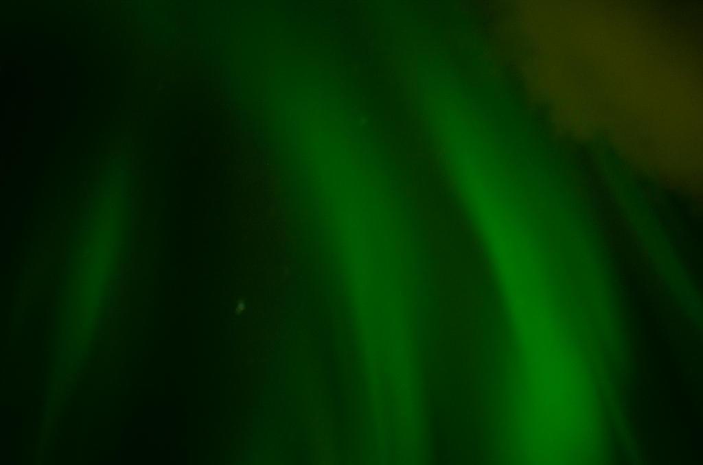 Aurora by TheFoxAndTheRaven