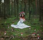 Amanita Muscaria by TheFoxAndTheRaven