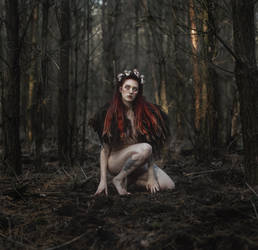 The Feral Queen