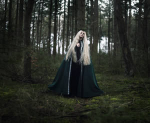 The Pine Queen