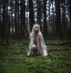 Fae of the Forest