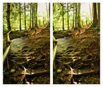 3D.eistobel - crossview