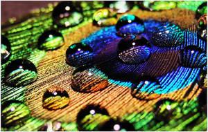 Colour drops by cblue