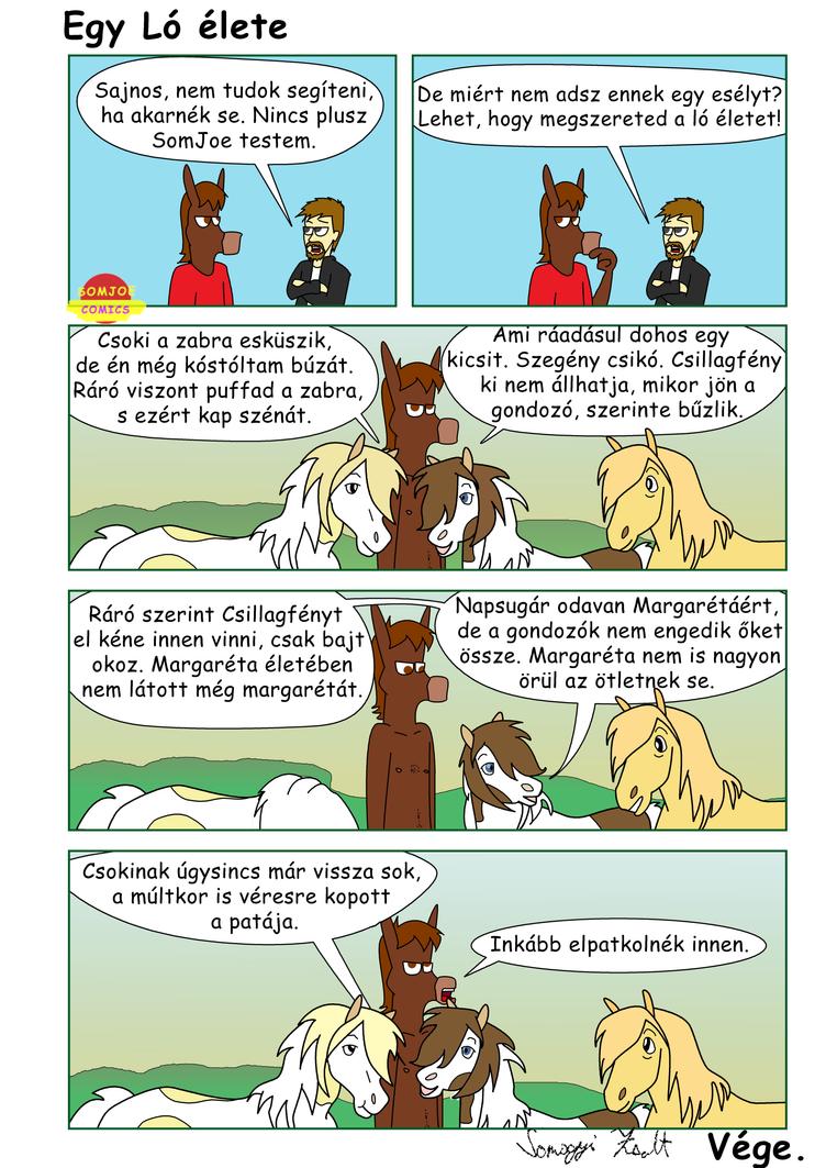 Egy ló élete