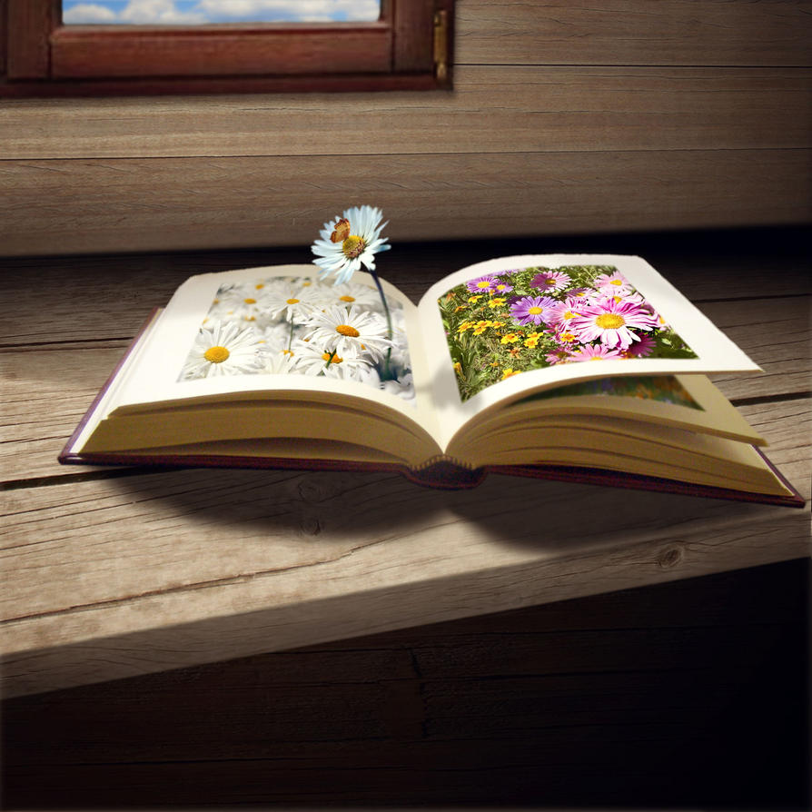 Book by yakro