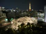 Tokyo Shinjuu by ulis6
