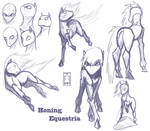 Honing Equestria Sketches