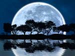 Lunar Earthscape