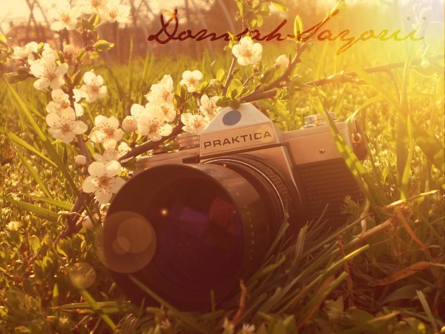 a very nice day... by DomsahSayorii