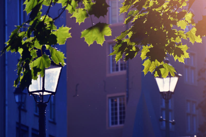 afternoon by DomsahSayorii