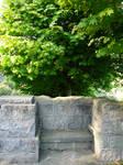 Stone Bench + Tree Background