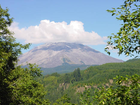 Mt. St. Helens Mountain Stock