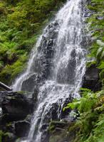 Waterfall Rocks n Leaves Stock by Enchantedgal-Stock