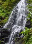 Waterfall Rocks n Leaves Stock