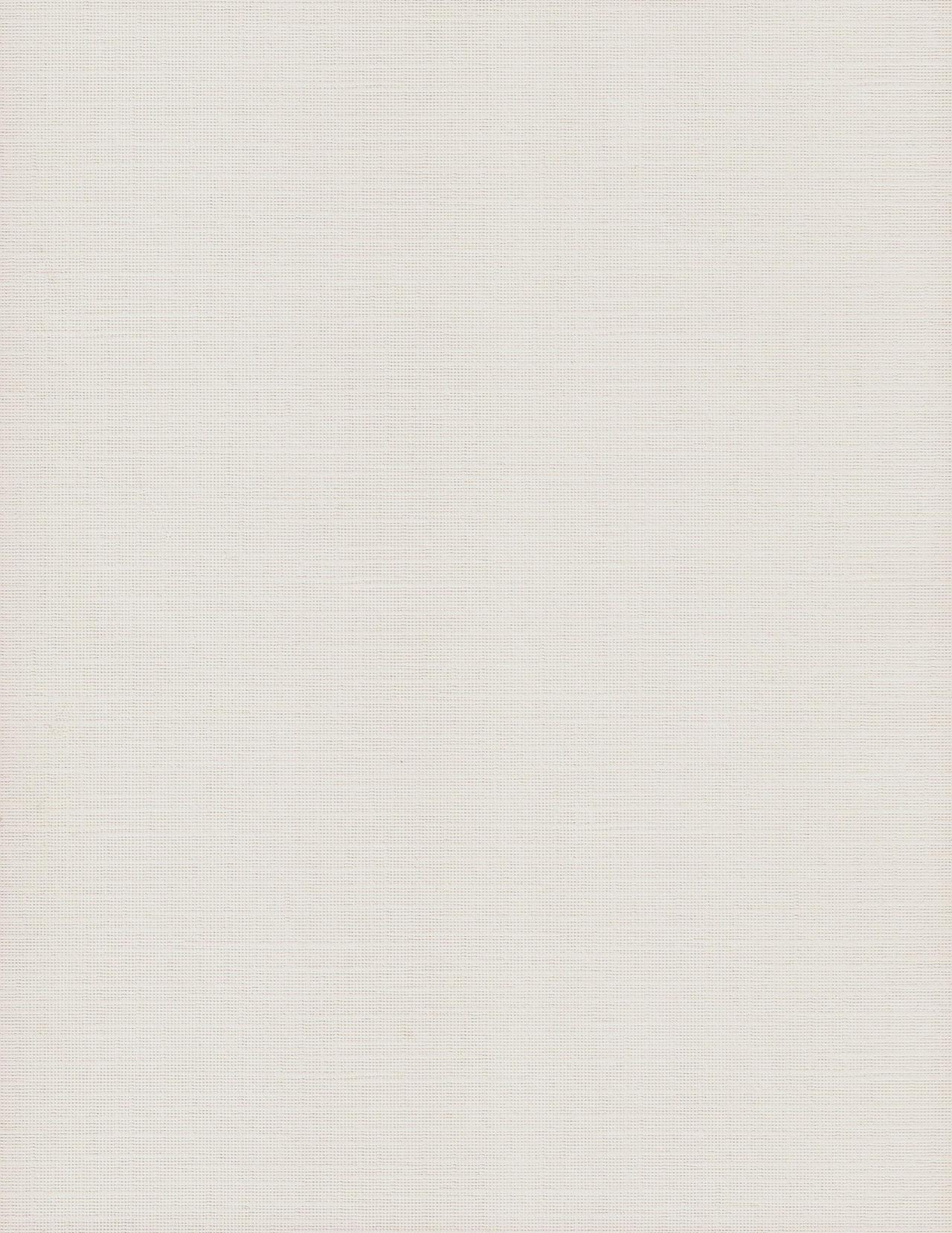 Canvas Texture White Paper