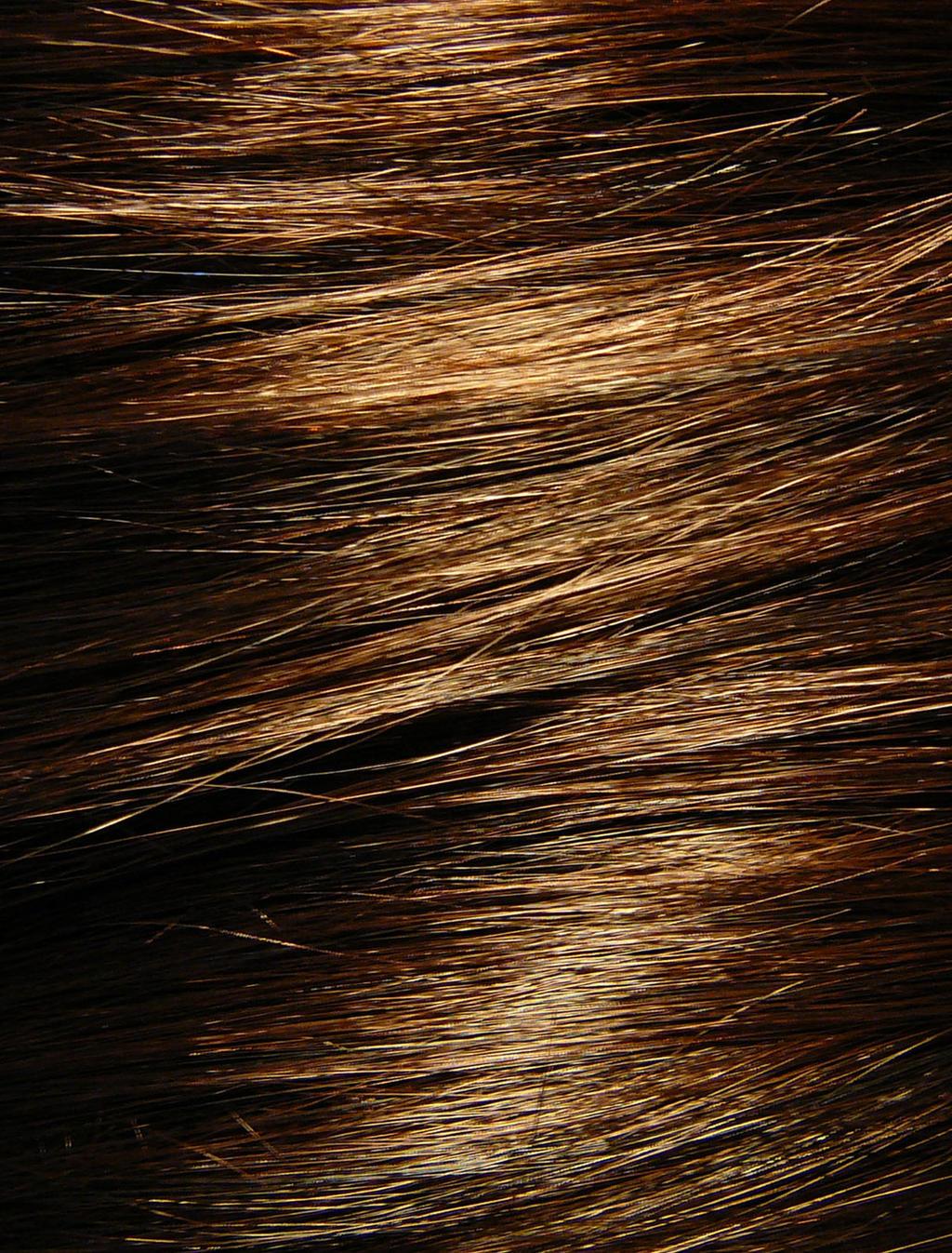 Brown Hair Texture Stock