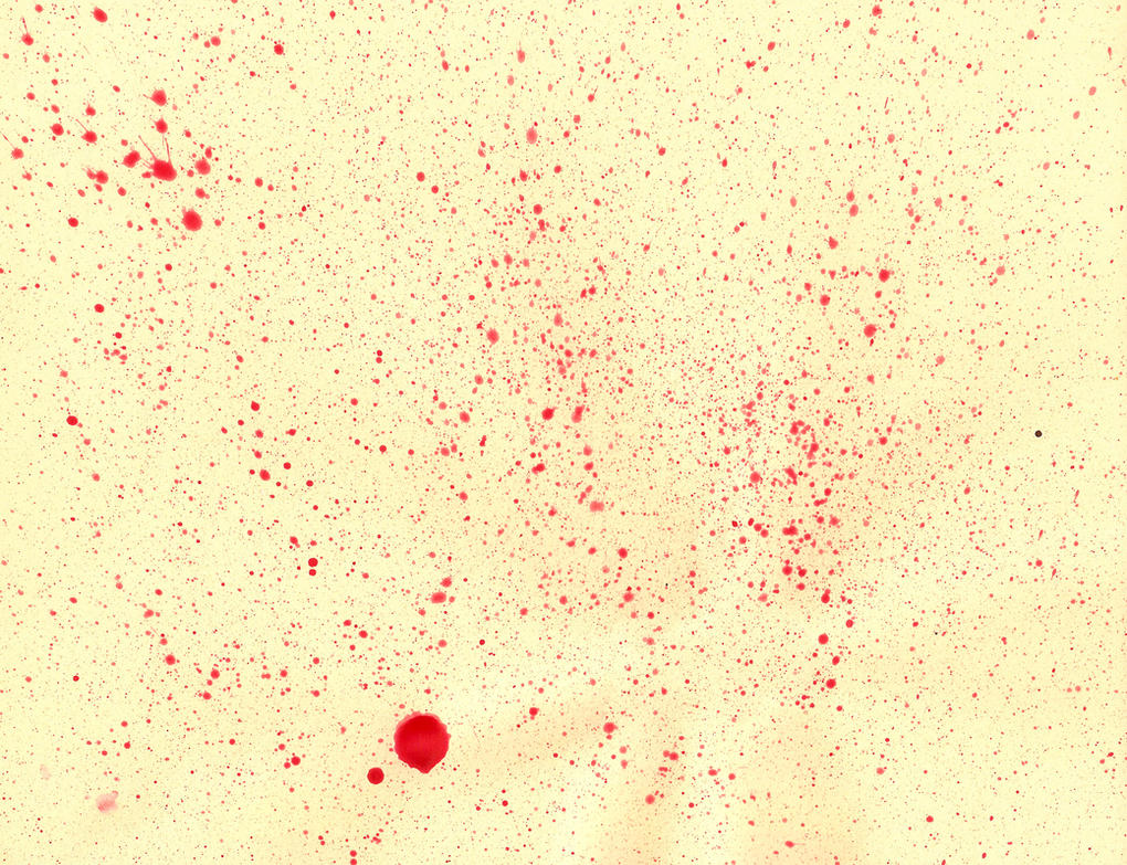 Paint Blood Splatter Texture by Enchantedgal-Stock on ...