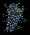 I'm Grape